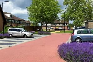 Veel waardering voor de nieuwe aanplant in Lageweg.